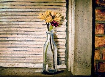 Flowers by window 2008